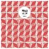 Felix! debutoval u slovenské značky Splash Recordings!