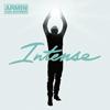 Hudební recenze: Armin van Buuren - Intense