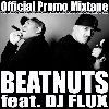 The Beatnuts live ft. DJ Flux