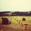 Ma Realist - Harvest 09