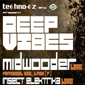 Techno.cz Night present Deep Vibes 2