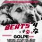 Akce Beats For Needy Paws na podporu psího útulku