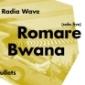 12. narozeniny Radia Wave opět ve velkém stylu